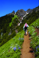 Olympic trail hiking
