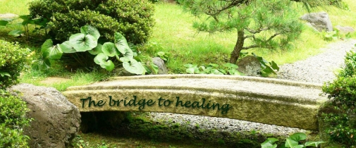 bridge to healing